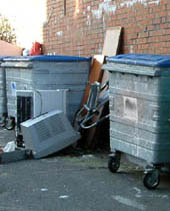 picture of rubbish piled beside bins